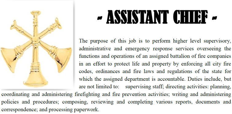 Assistant Chief Career